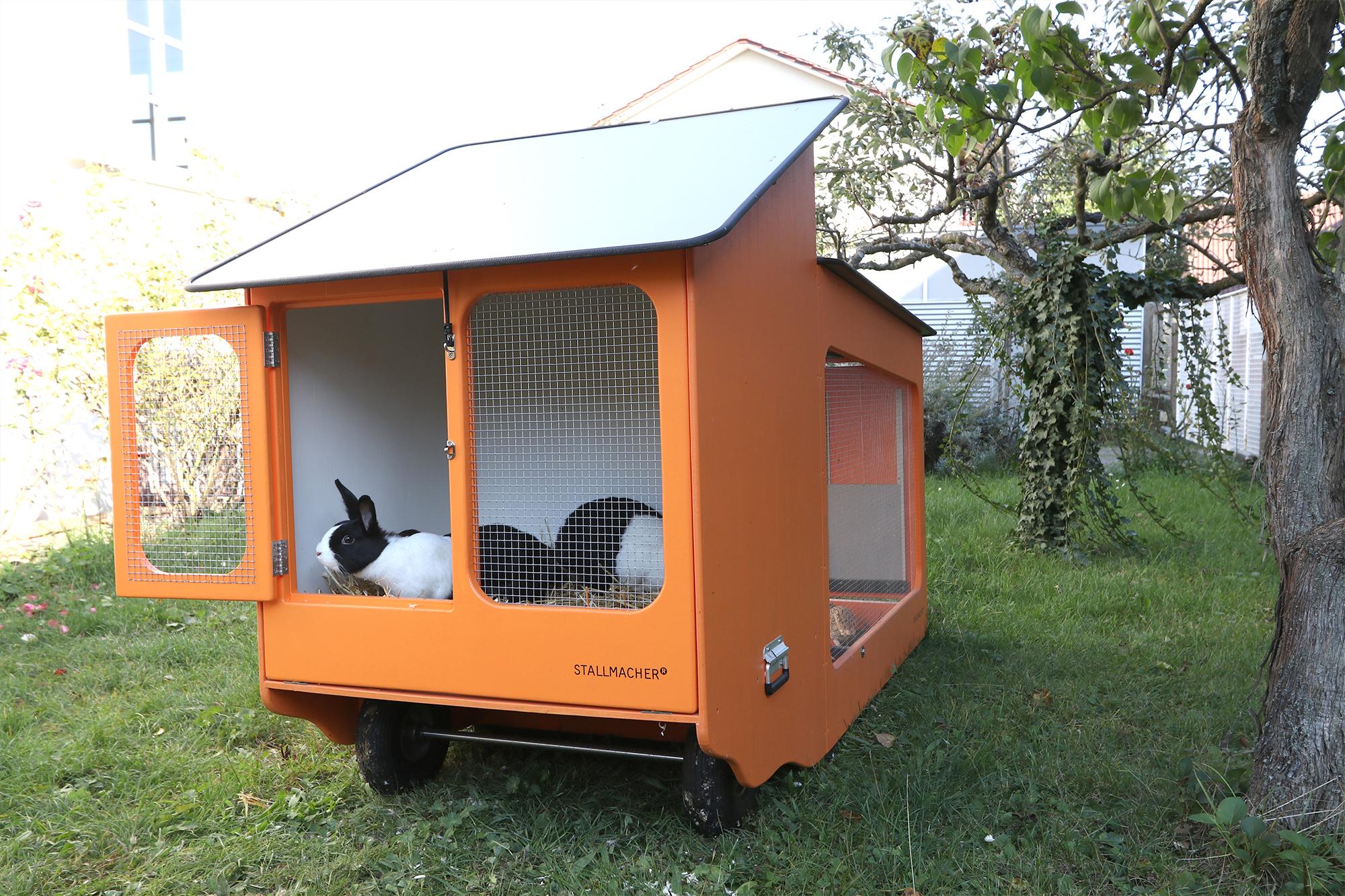 Mobiler Hühnerstall mit Kaninchen